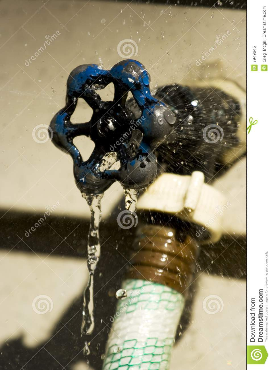 Leaking Outdoor Spigot Royalty Free Stock Photo