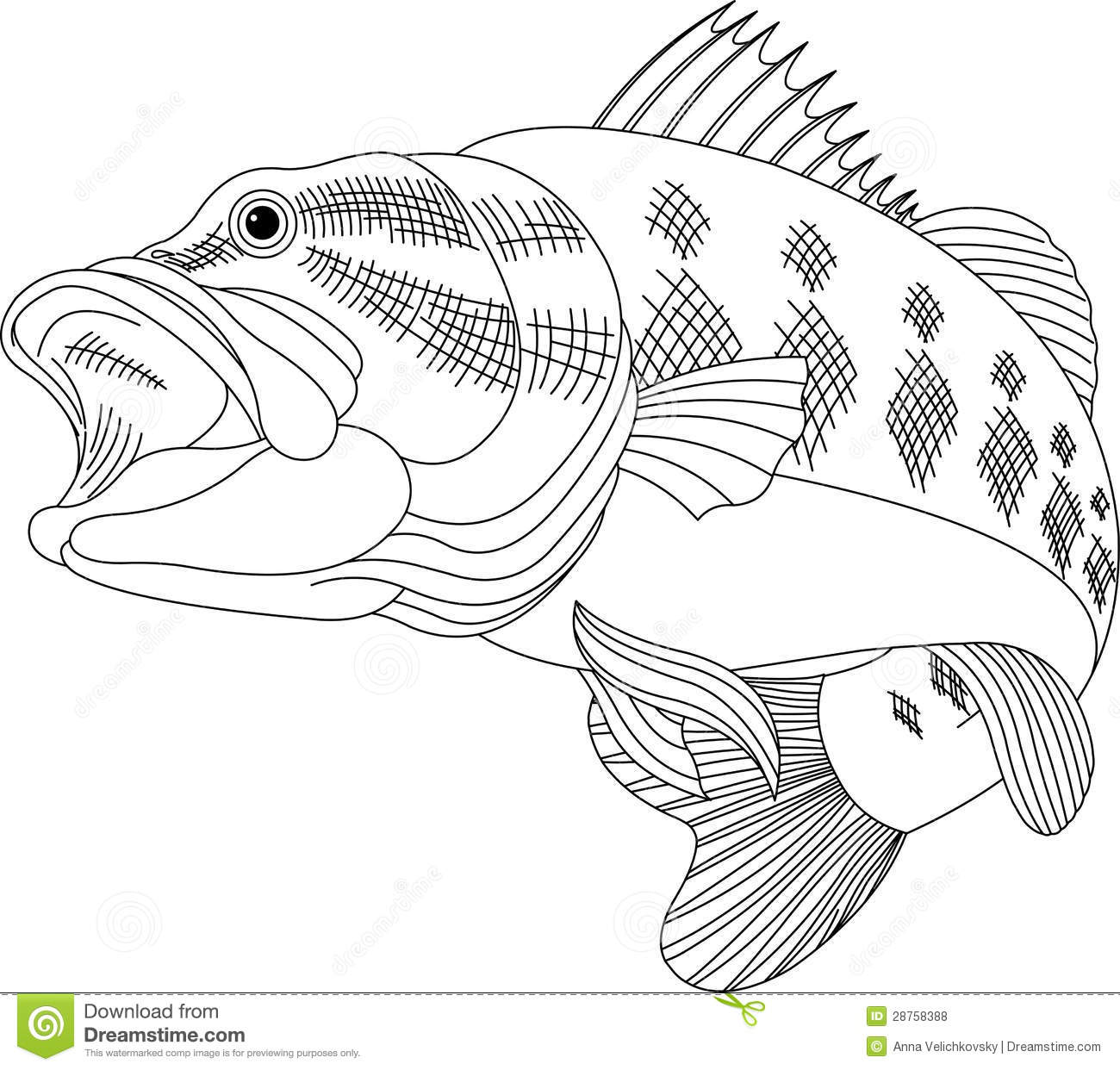 Bass Black Illustration Line Fish