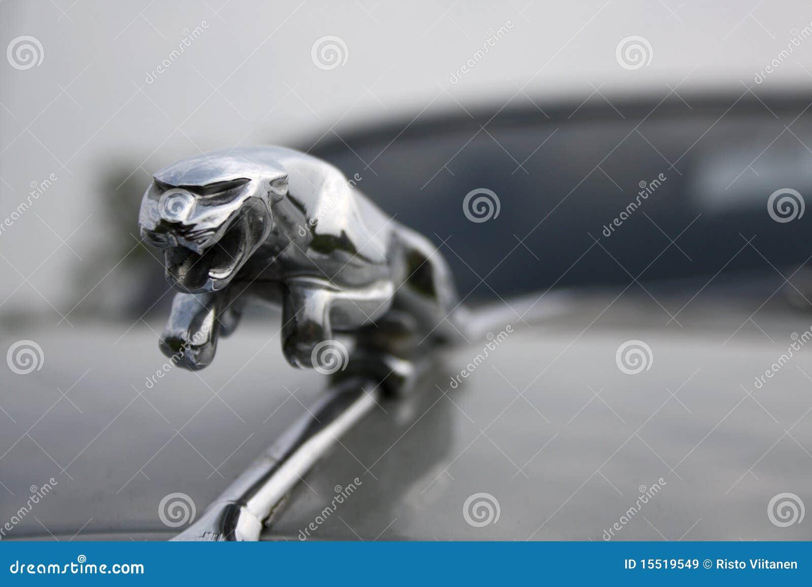 Leaping jaguar symbol of british sports car editorial stock leaping jaguar symbol of british sports car buycottarizona
