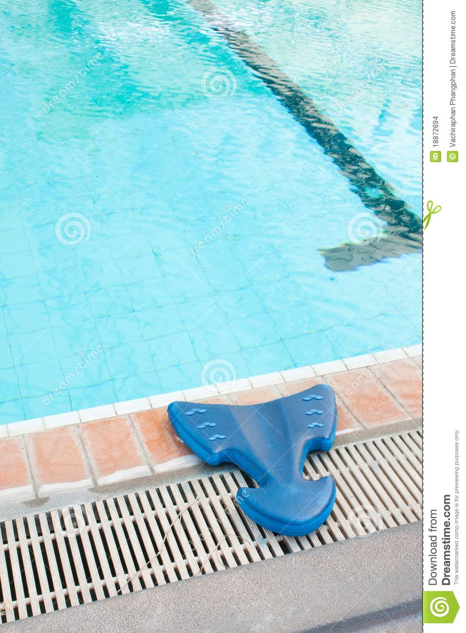 The Beginner's Guide to Swimming Equipment / Gear