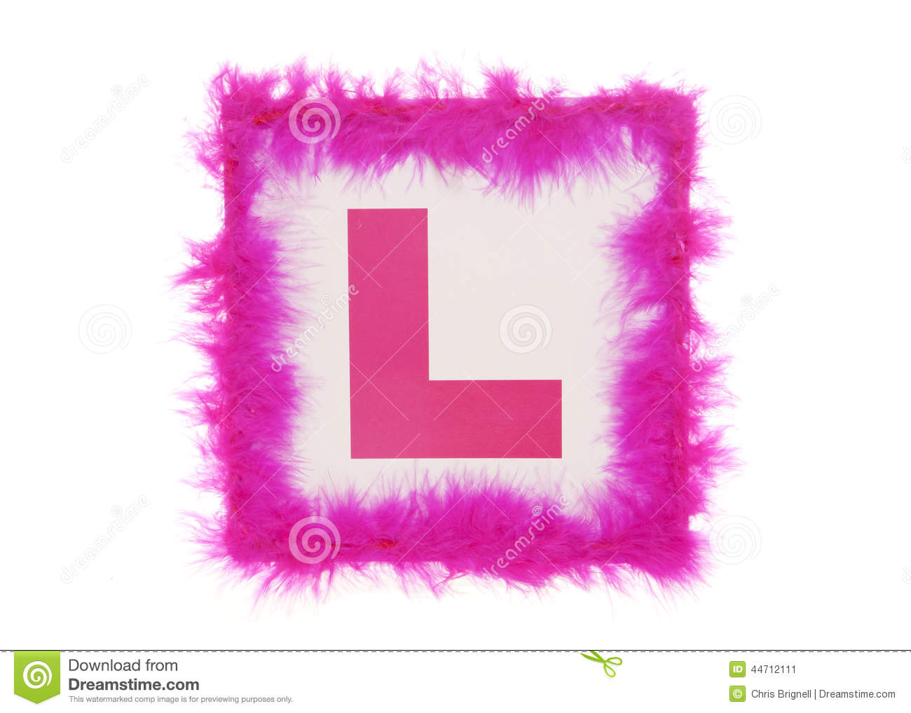 Learner Hen Party Plate Stock Photo - Image: 44712111