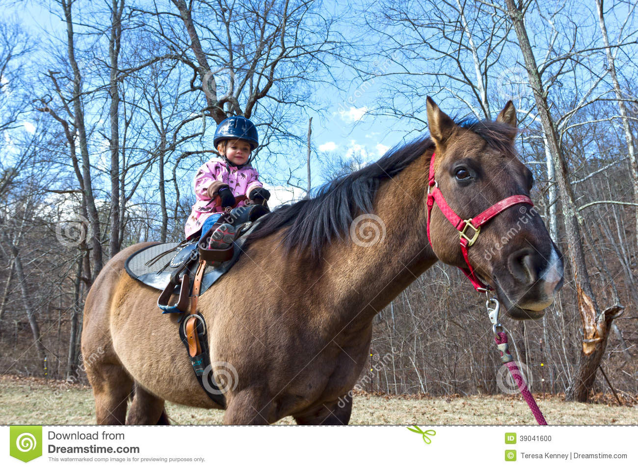 Learning to Ride a Horse at an Older Age - thesprucepets.com