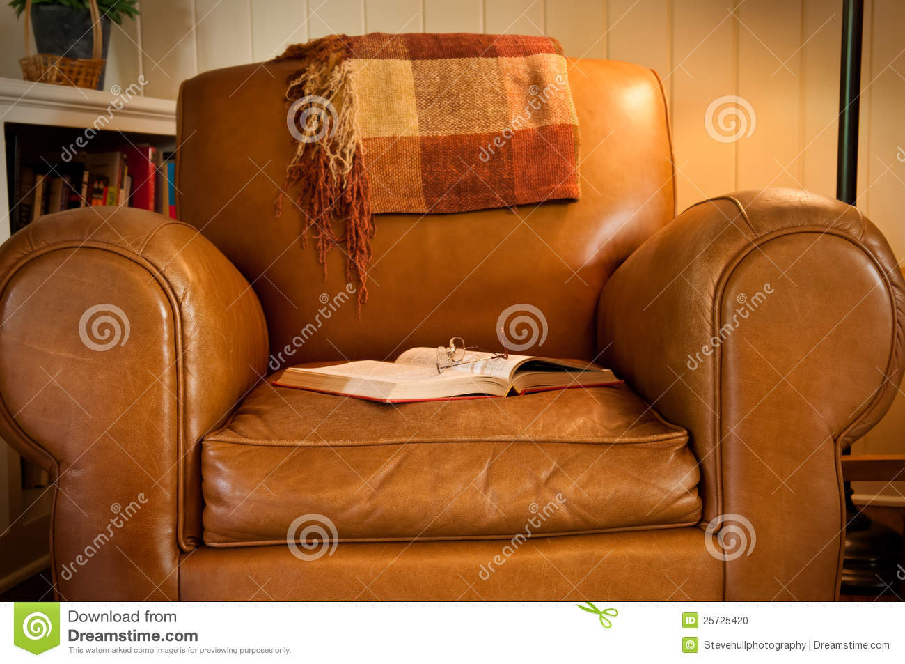 Leather Armchair and Book