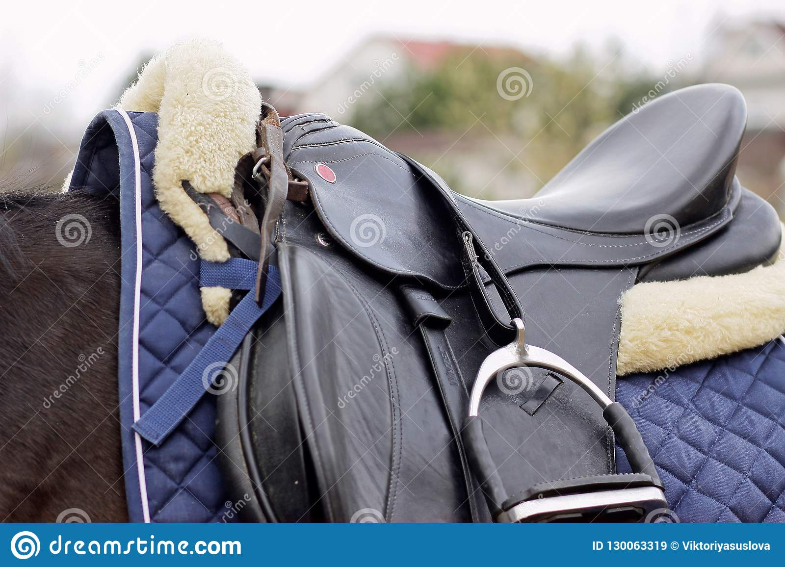 Leather Black Seat And White Fur Saddle Cloth Stock Image Image Of Horse Items 130063319