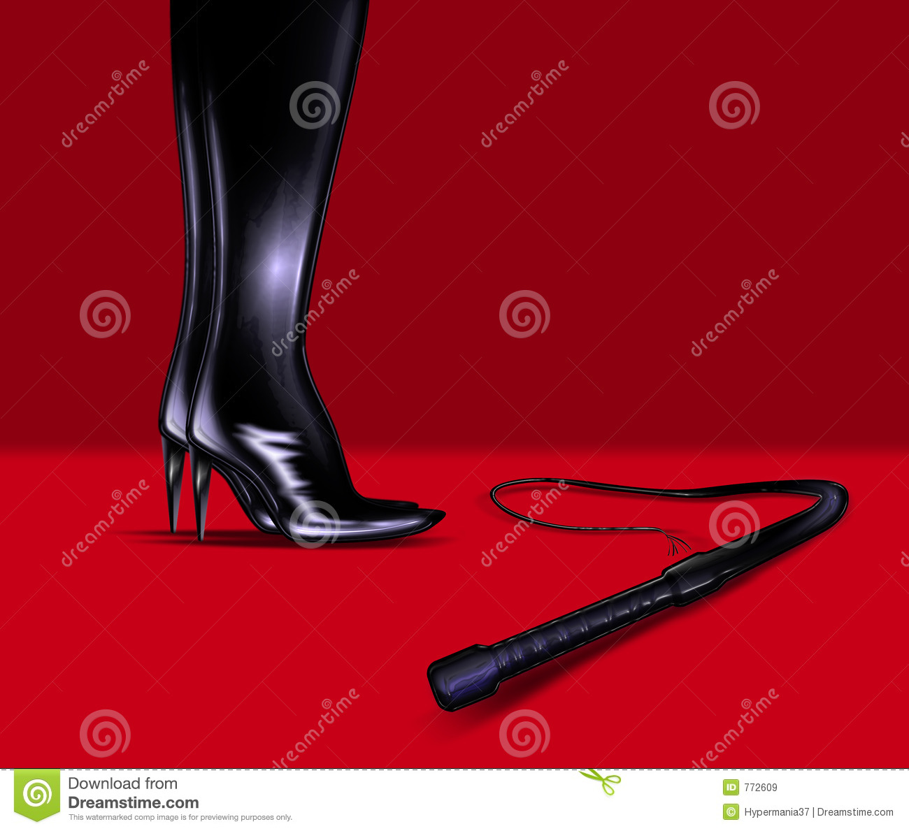 Leather boots and whip