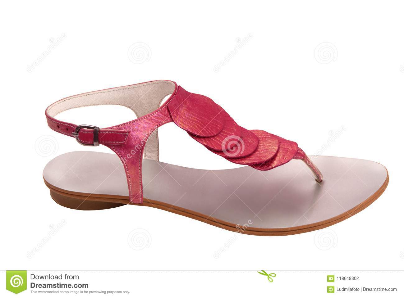 e3b064d5fb38b Leather Female Sandals Is On White Stock Photo - Image of beautiful ...