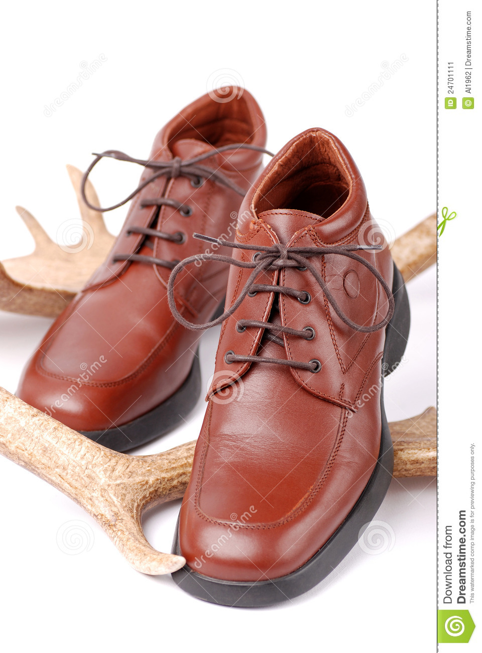 Leather Shoes Stock Image - Image: 24701111