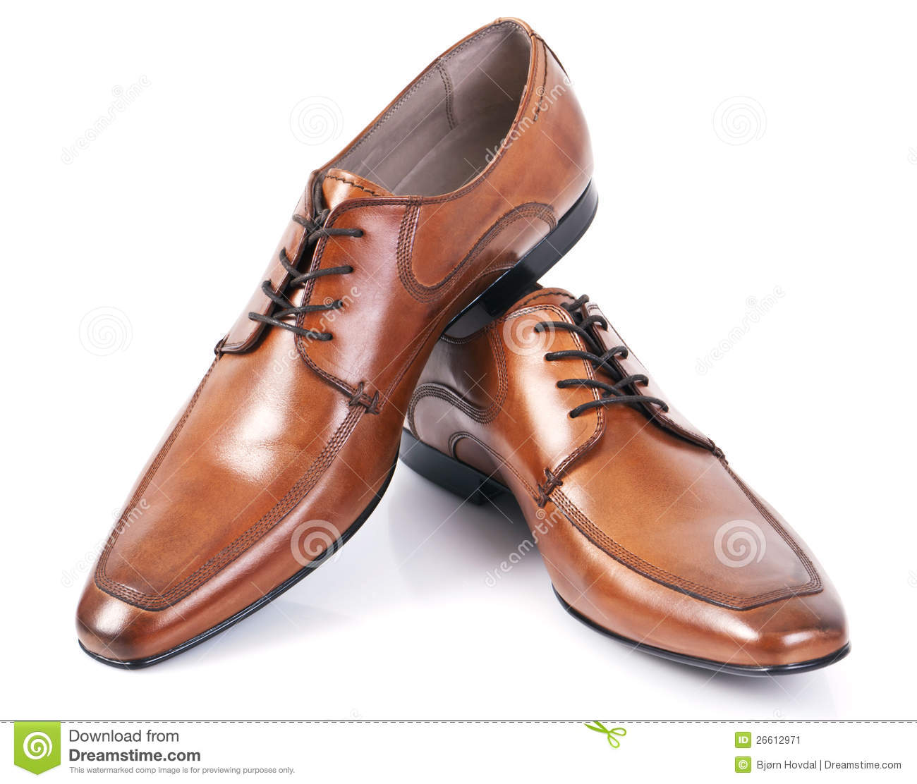 Brown Shoe Stock
