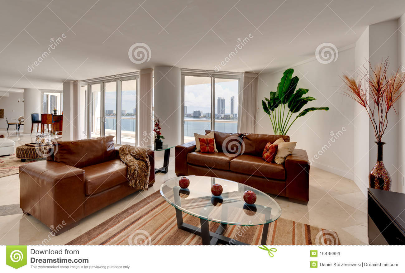 Leather Sofa in Modern Apartment