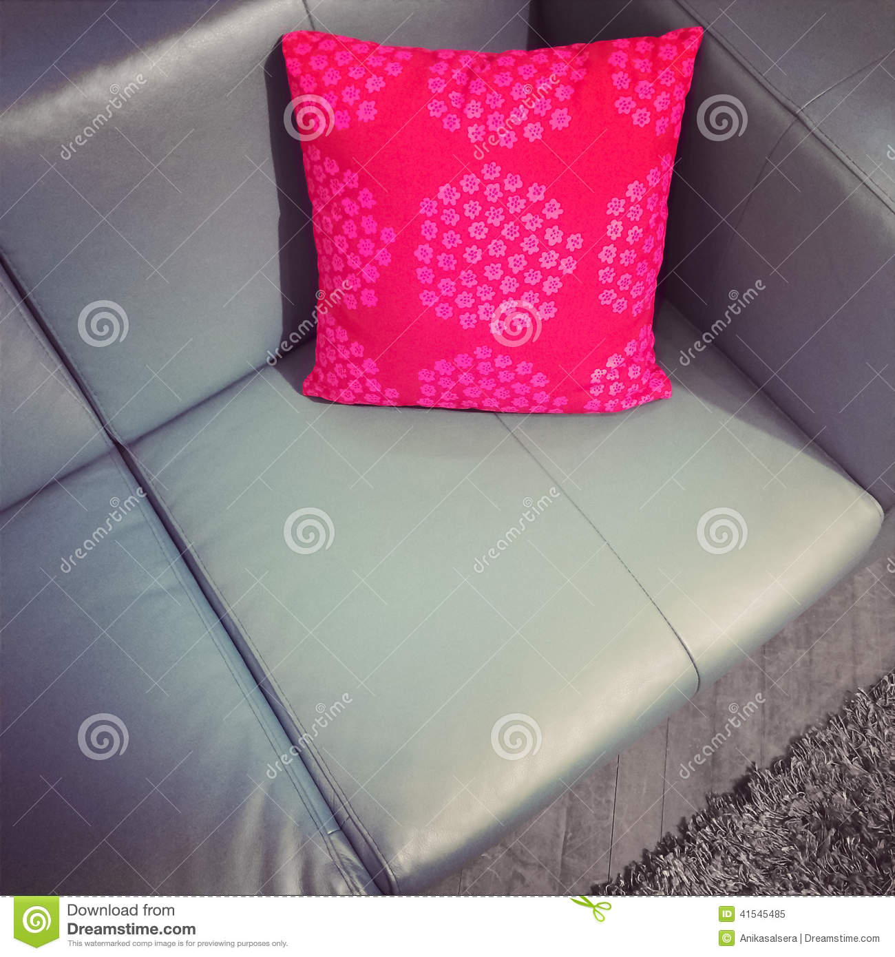 Leather Sofa With Red Cushion Stock Image