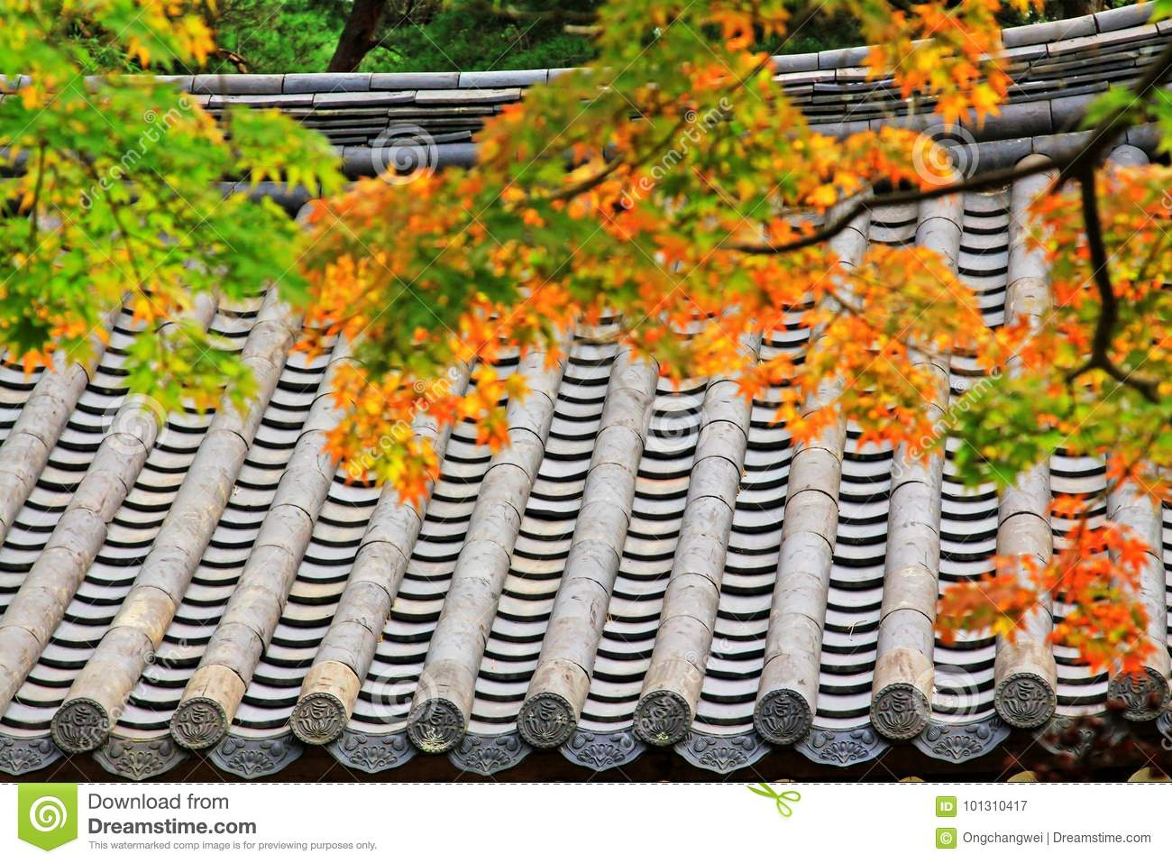 Leaves In Automn with Asian Traditional Roof