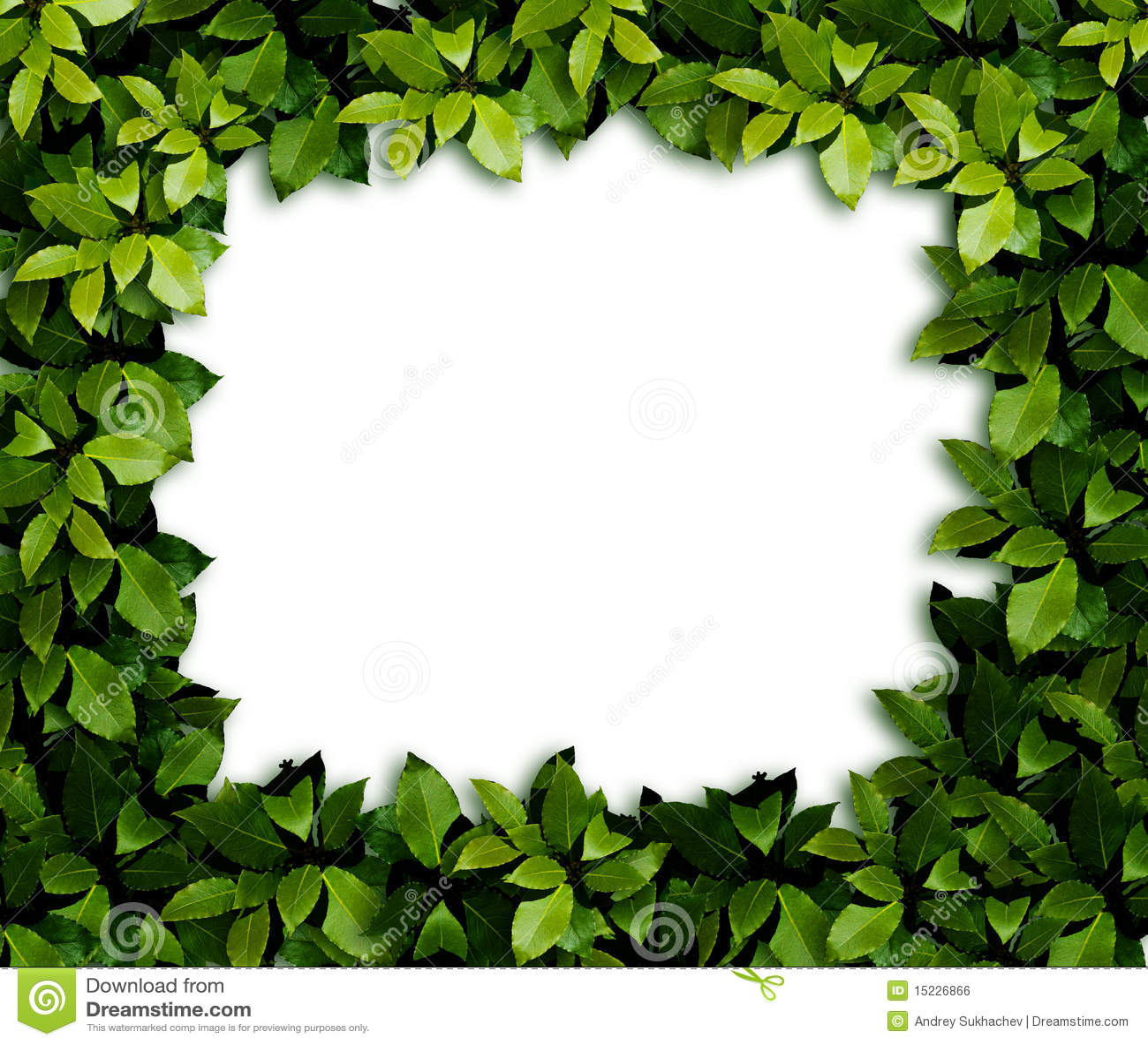 Leaves Background Royalty Free Stock Image - Image: 15226866