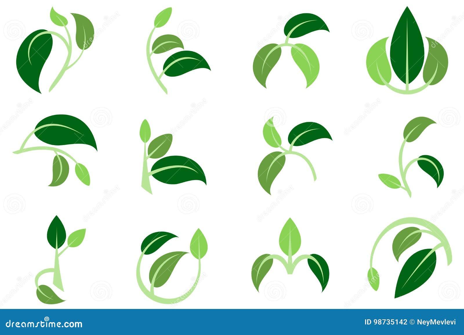 3 leaves 3 colors 3 twigs symbol logo