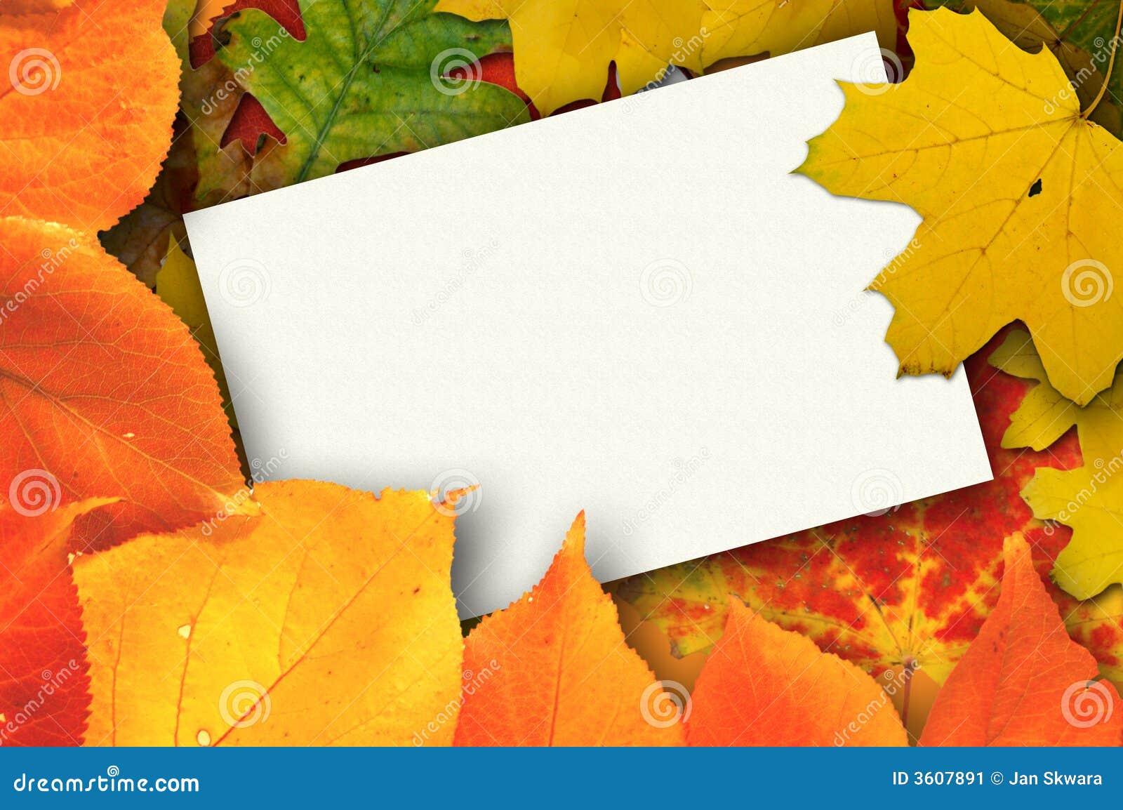 Leaves för blankt kort för höst omgivna härliga