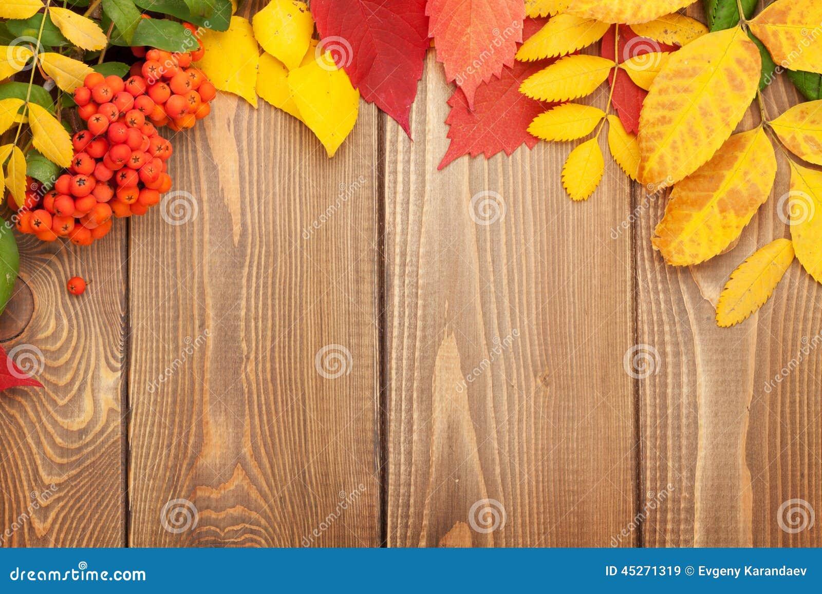 Leaves för höstbakgrundskopia över avståndsträ