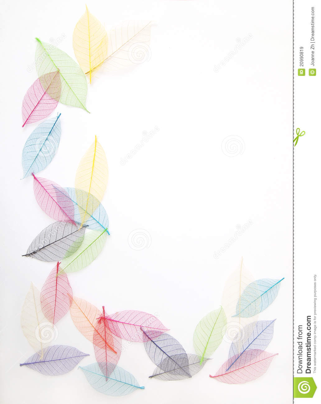 Leaves frame in pretty colors
