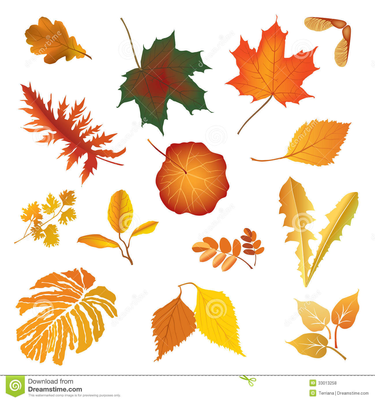 Leaves icon set autumn nature decor royalty free stock