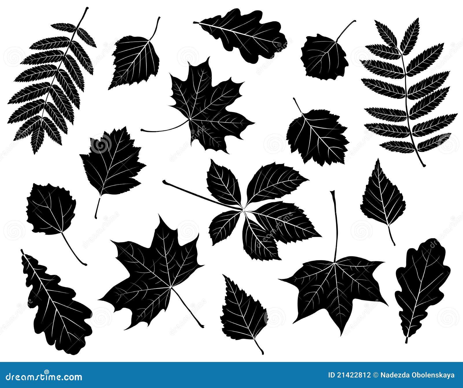 Leaves inställda silhouettes