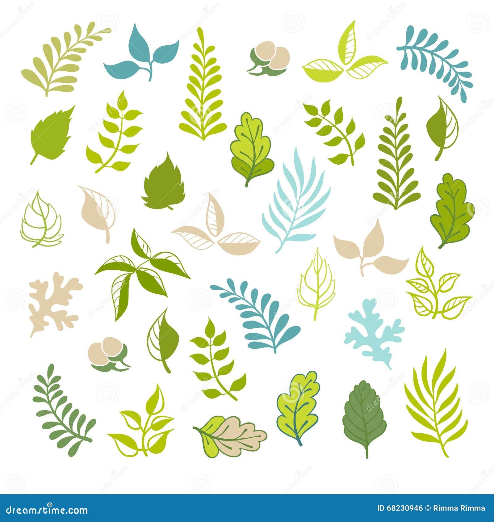 Leaves Vector Set Botanical Garden Elements On White Background