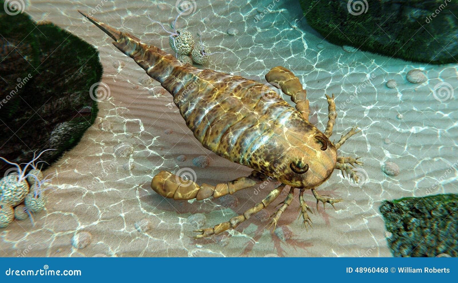 Lecho marino de exploración de Eurypterid (escorpión de mar)