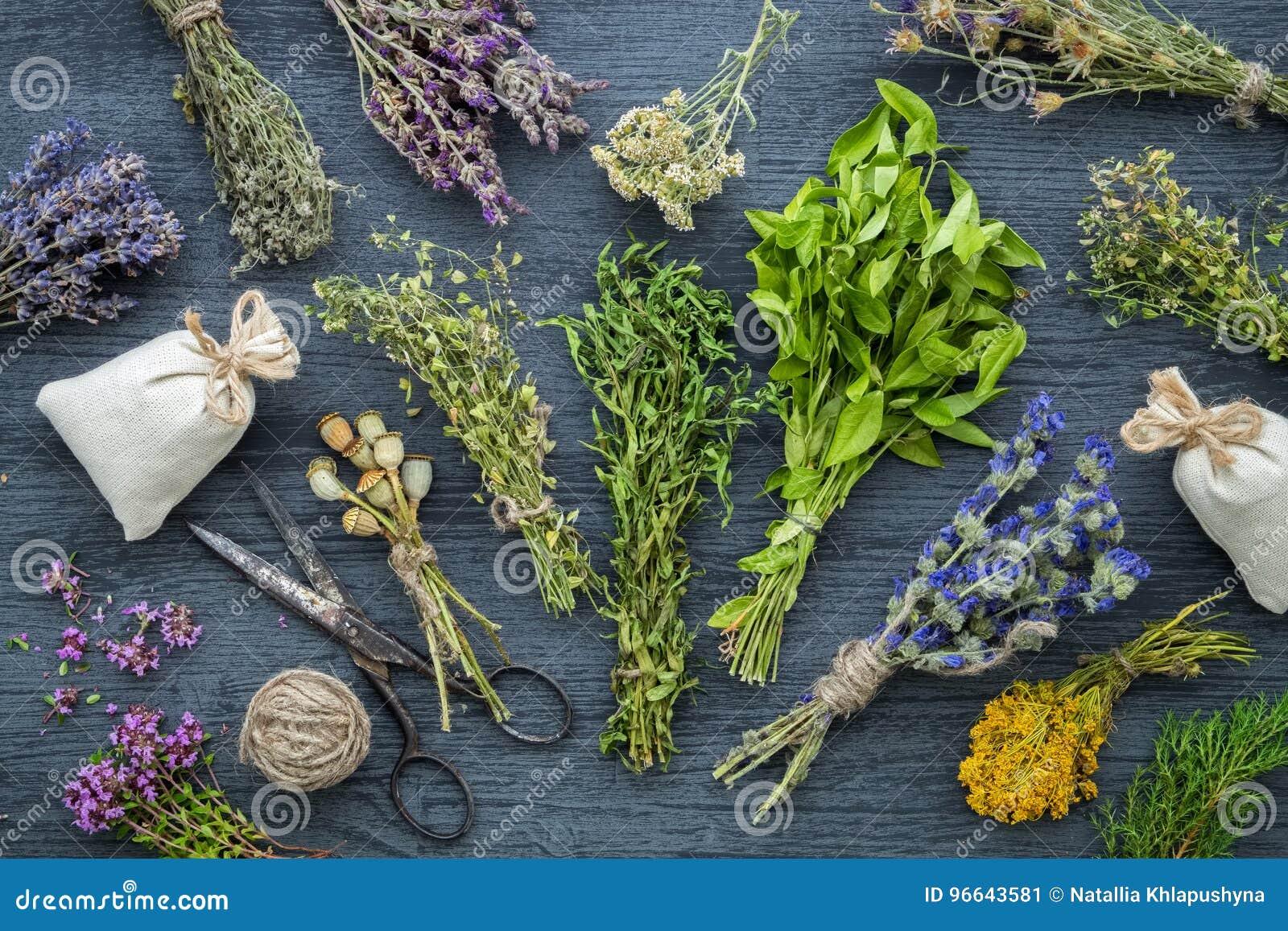 Lecznicze ziele wiązki, saszetka i nożyce,