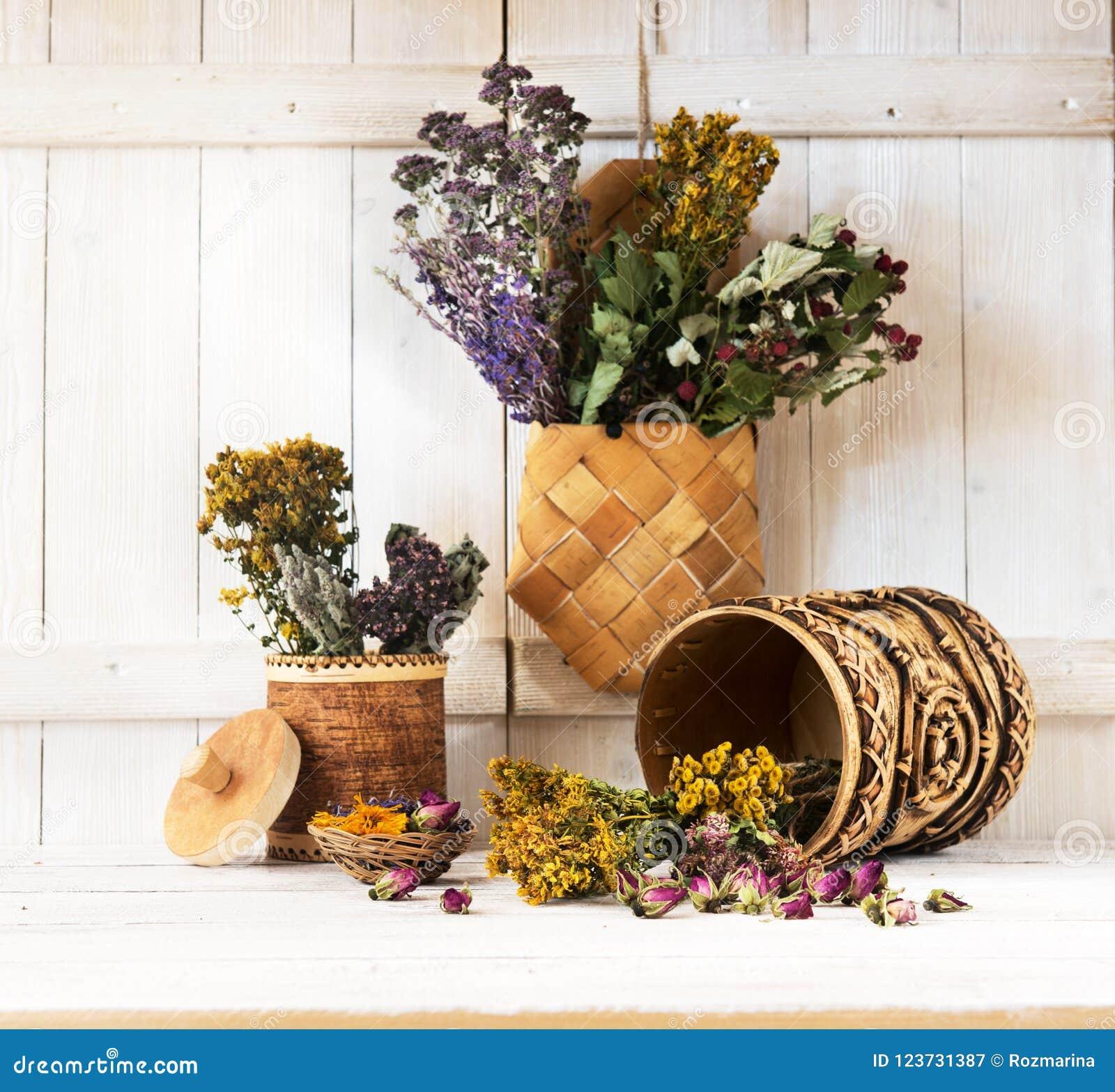 Leczniczy ziele i kwiaty Leczniczy ziele w brzozy barkentyny pudełkach
