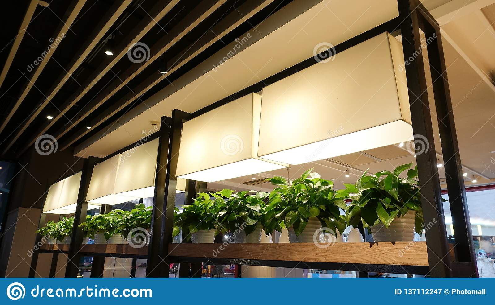 Led plant growth lamp seedling in commercial building