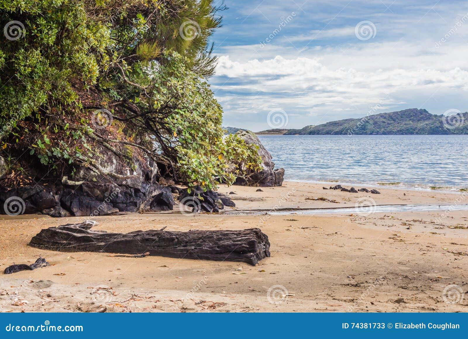 Lee zatoki plaża, Ulva wyspa, Nowa Zelandia