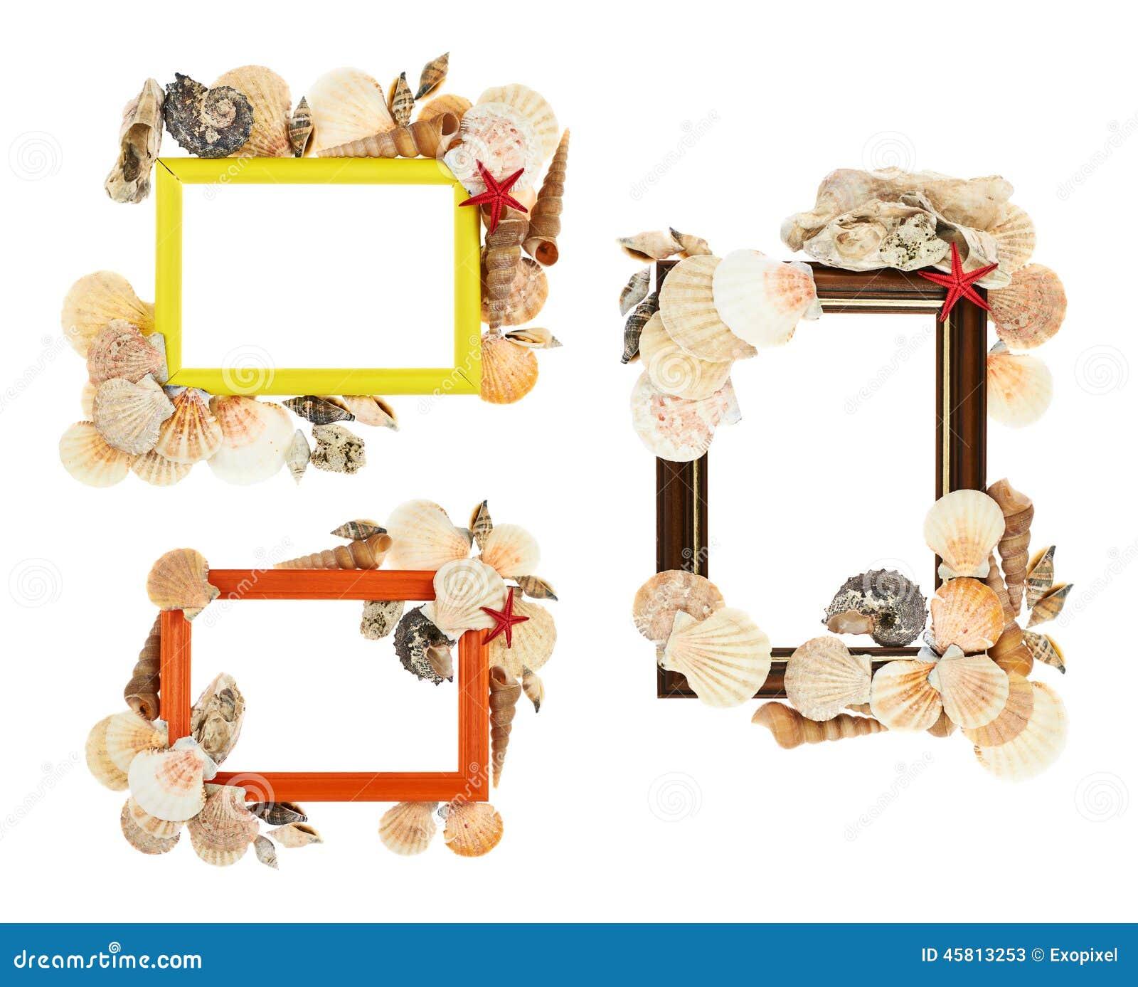 Leerer Rahmen Verziert Mit Muscheln Stockbild - Bild von exotisch ...