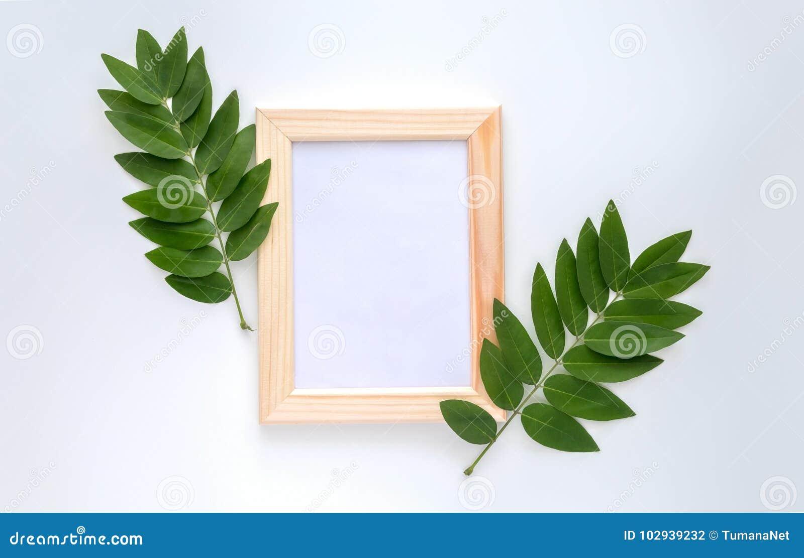 Leeres hölzernes Fotorahmenmodell mit Grün verlässt herum, auf weißem Hintergrund