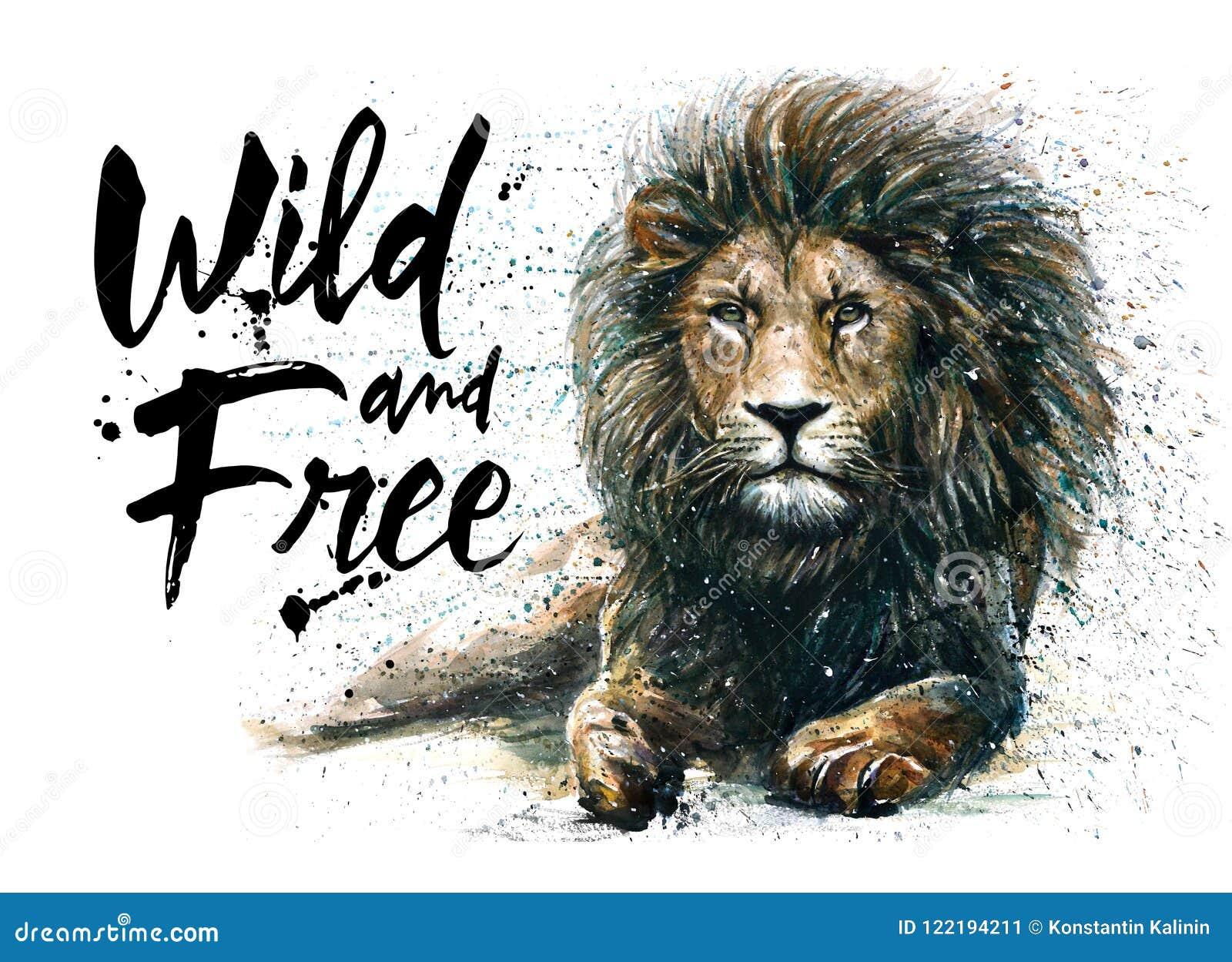 Leeuw-koning, waterverf schilderen, roofdier van dieren, het wild het schilderen