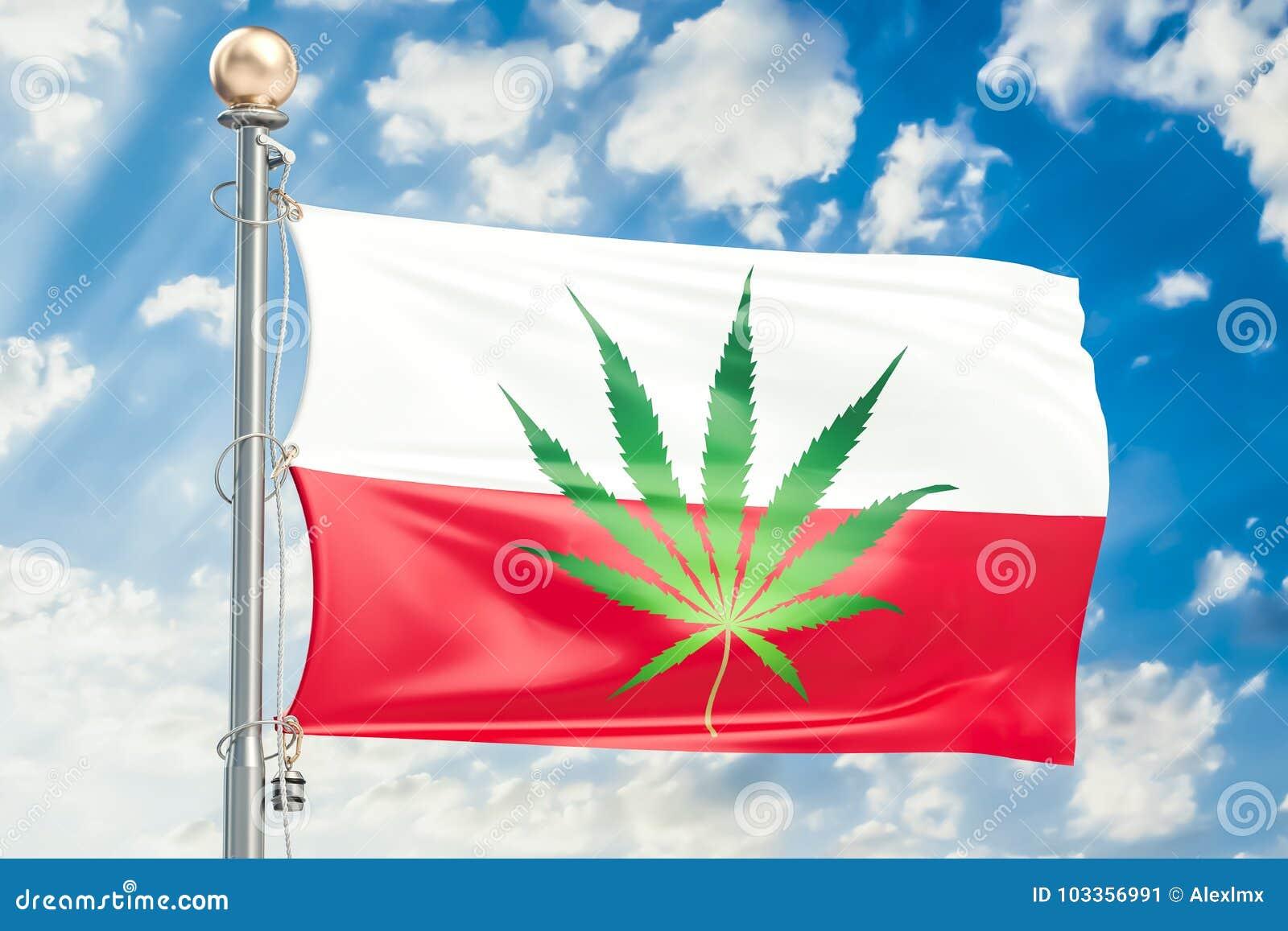 Legalisierung Des Hanfs In Polen Polnische Flagge Mit Marihuana L