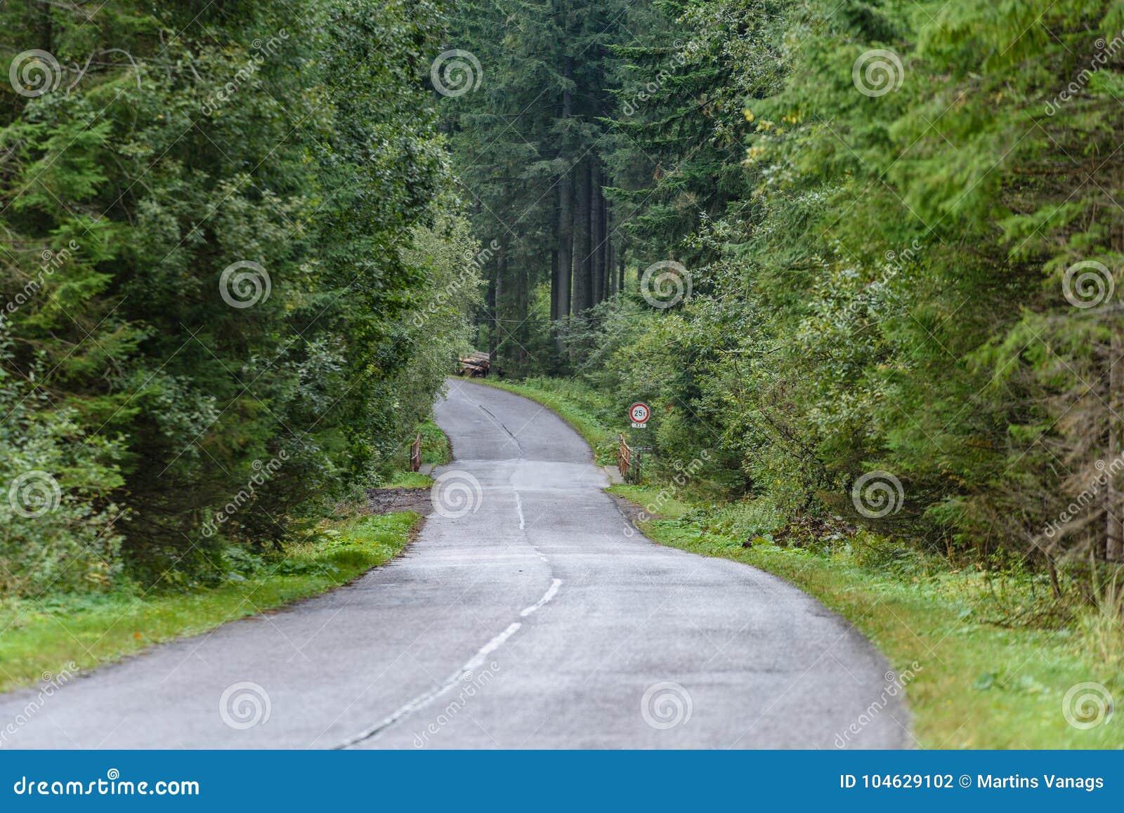 Download Lege Asfaltweg In Het Platteland In De Zomer Stock Foto - Afbeelding bestaande uit summer, grint: 104629102