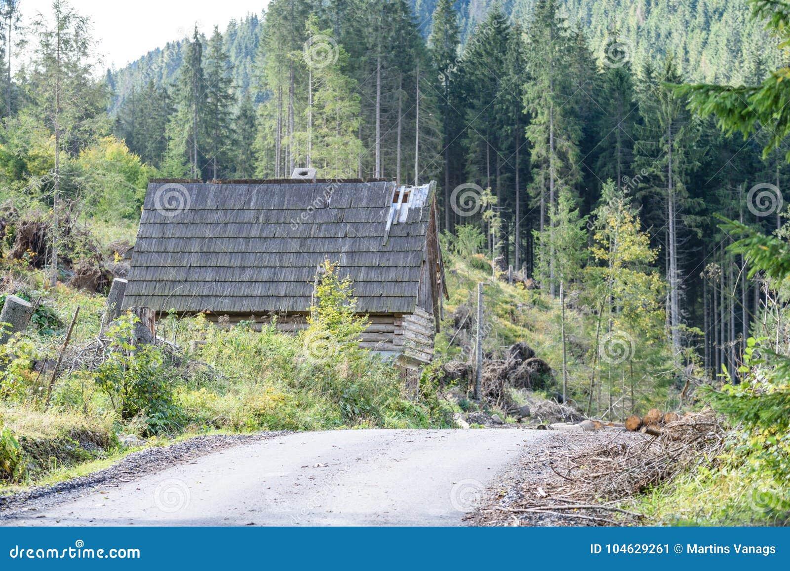 Download Lege Asfaltweg In Het Platteland In De Zomer Stock Afbeelding - Afbeelding bestaande uit contrast, vakantie: 104629261