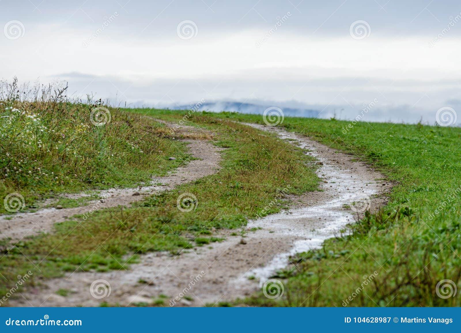 Download Lege Grintweg In Het Platteland In De Zomer Stock Afbeelding - Afbeelding bestaande uit sporen, summer: 104628987