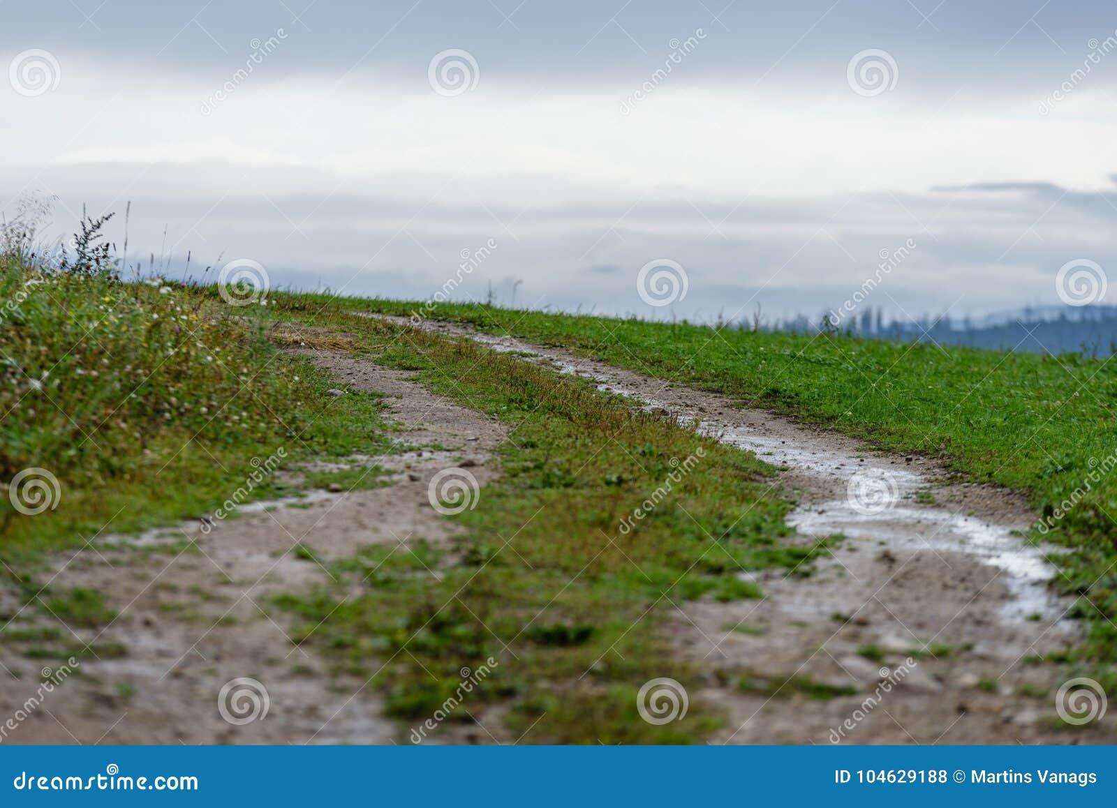 Download Lege Grintweg In Het Platteland In De Zomer Stock Foto - Afbeelding bestaande uit grint, vakantie: 104629188