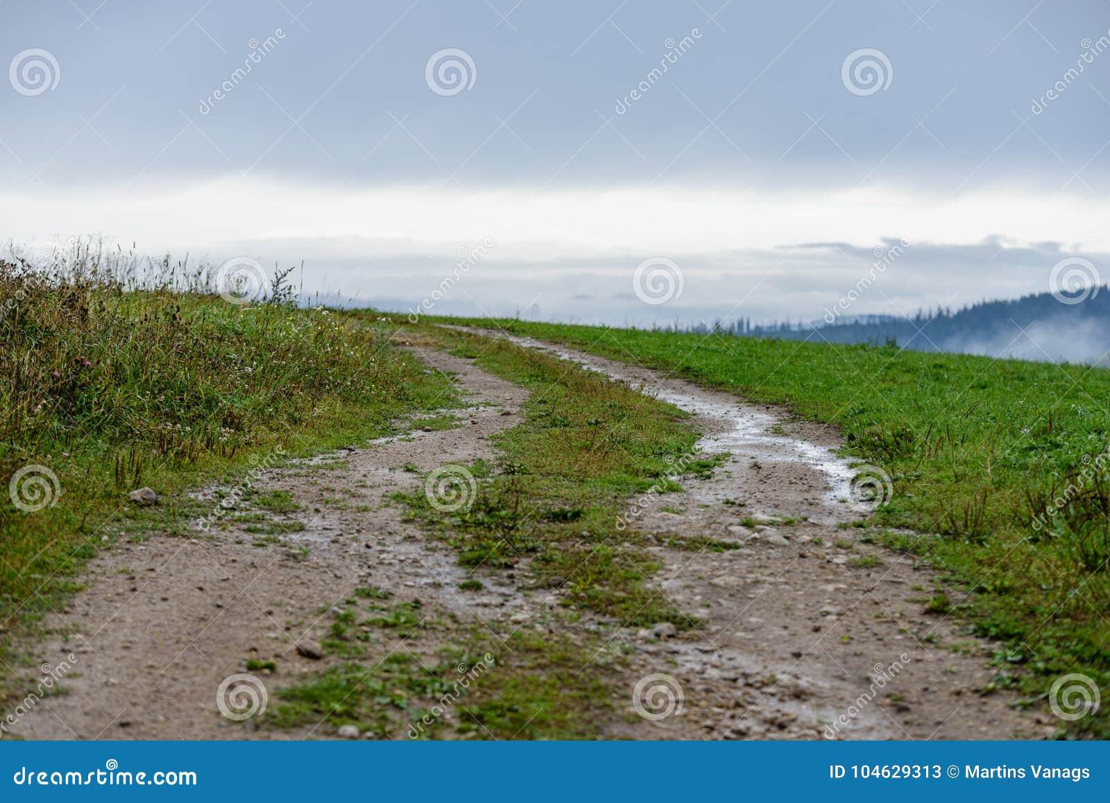 Download Lege Grintweg In Het Platteland In De Zomer Stock Afbeelding - Afbeelding bestaande uit slepen, letland: 104629313
