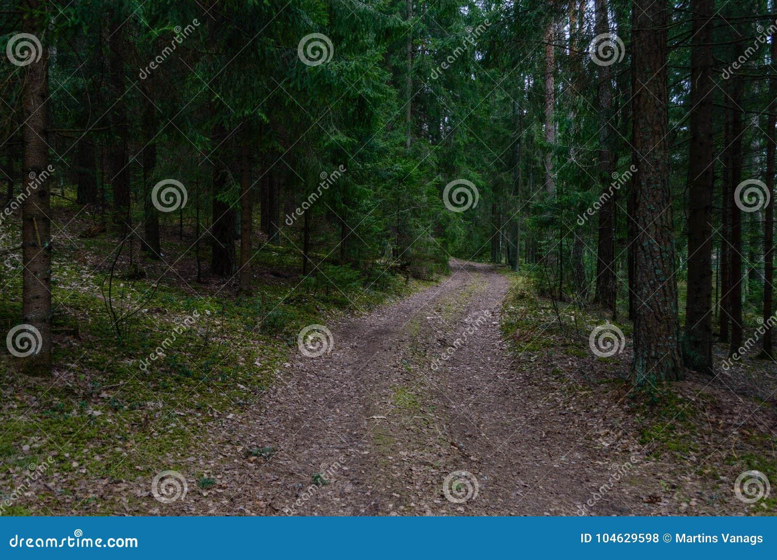 Download Lege Grintweg In Het Platteland In De Zomer Stock Foto - Afbeelding bestaande uit sporen, gras: 104629598