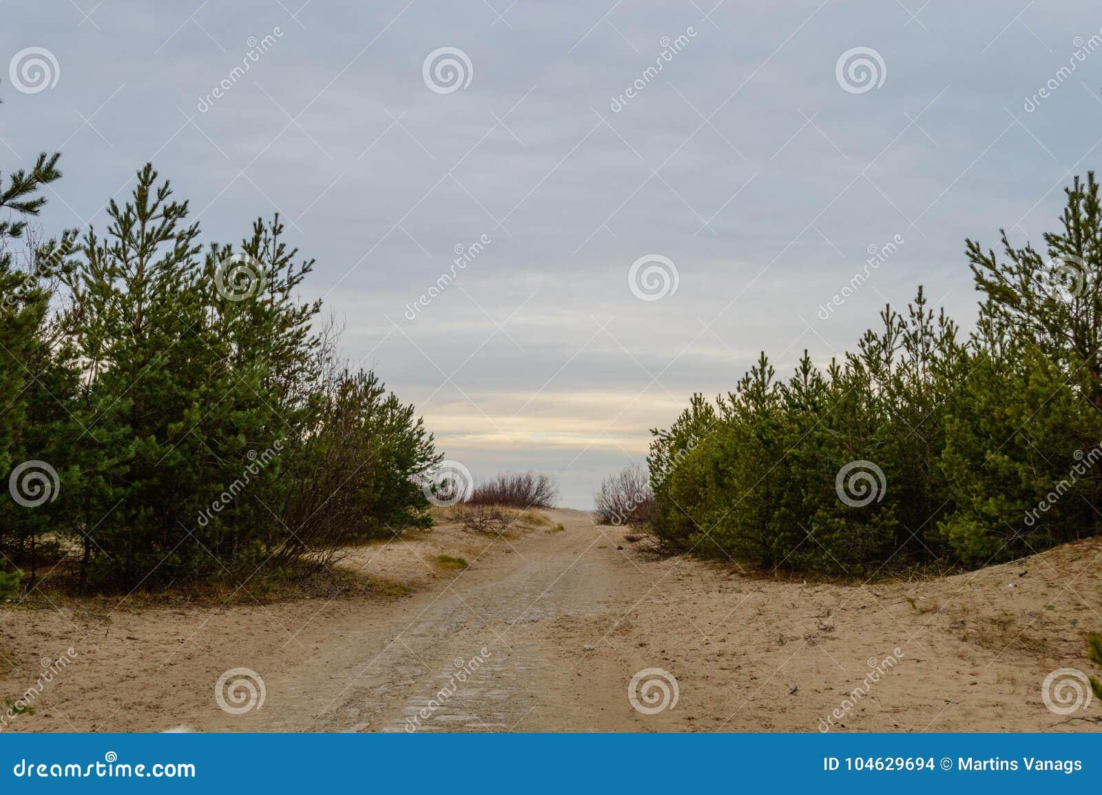 Download Lege Grintweg In Het Platteland In De Zomer Stock Foto - Afbeelding bestaande uit letland, schaduwen: 104629694