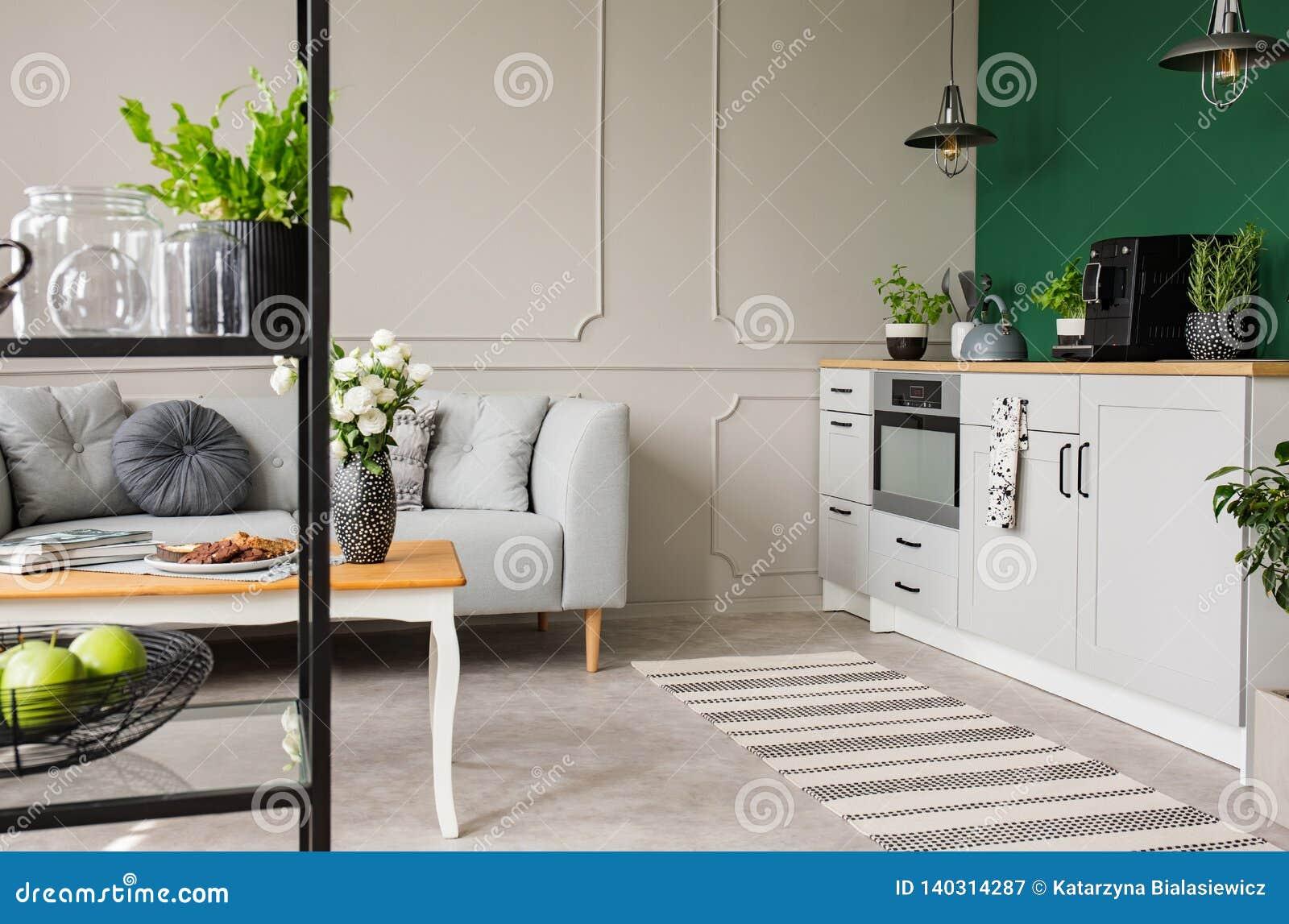 Lege groene muur met exemplaarruimte in elegante keuken met witte meubilair, installaties en koffiemachine in modieus flatje met