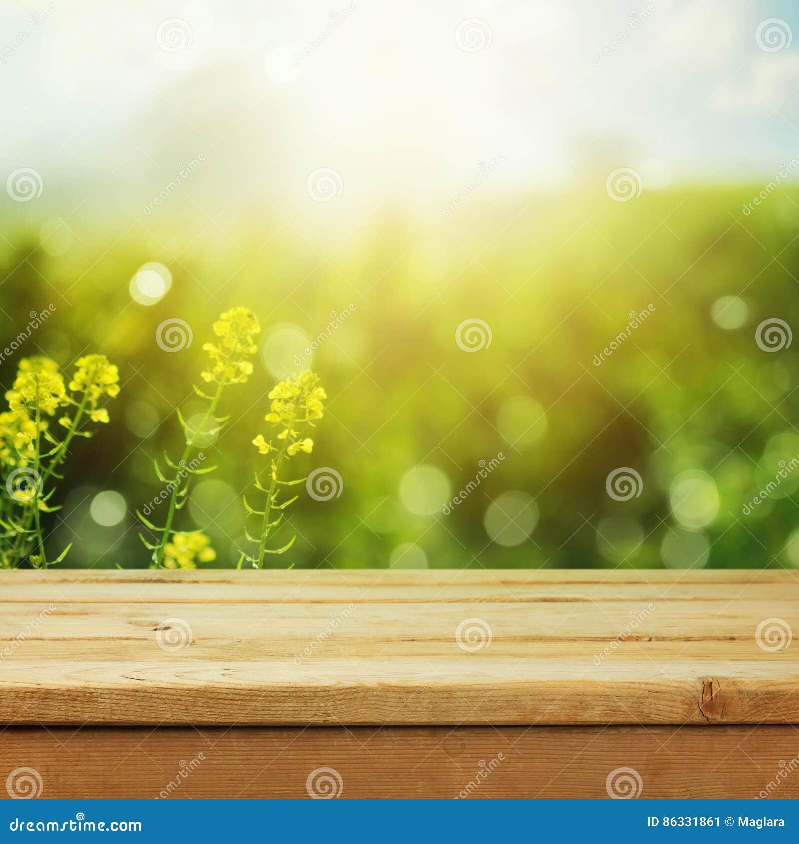 Lege houten deklijst over groene weide bokeh achtergrond voor de vertoning van de productmontering De lente of zomer