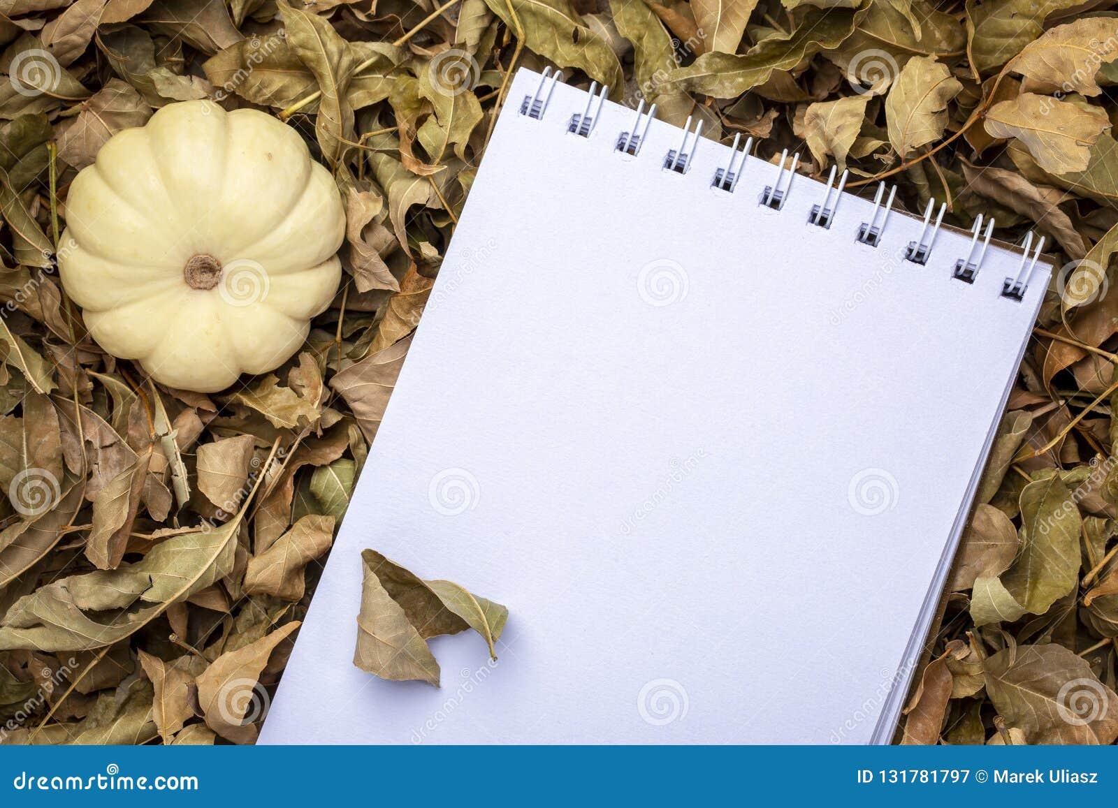 Lege spiraal sketchbook tegen droge dalingsbladeren