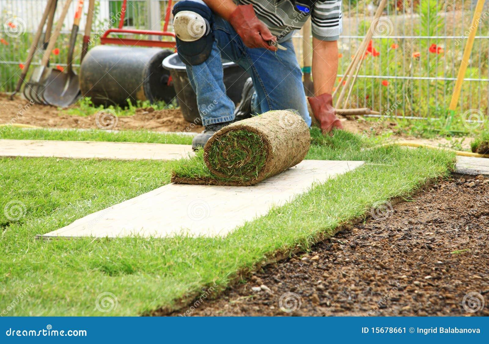 Legen der Grasscholle für neuen Rasen