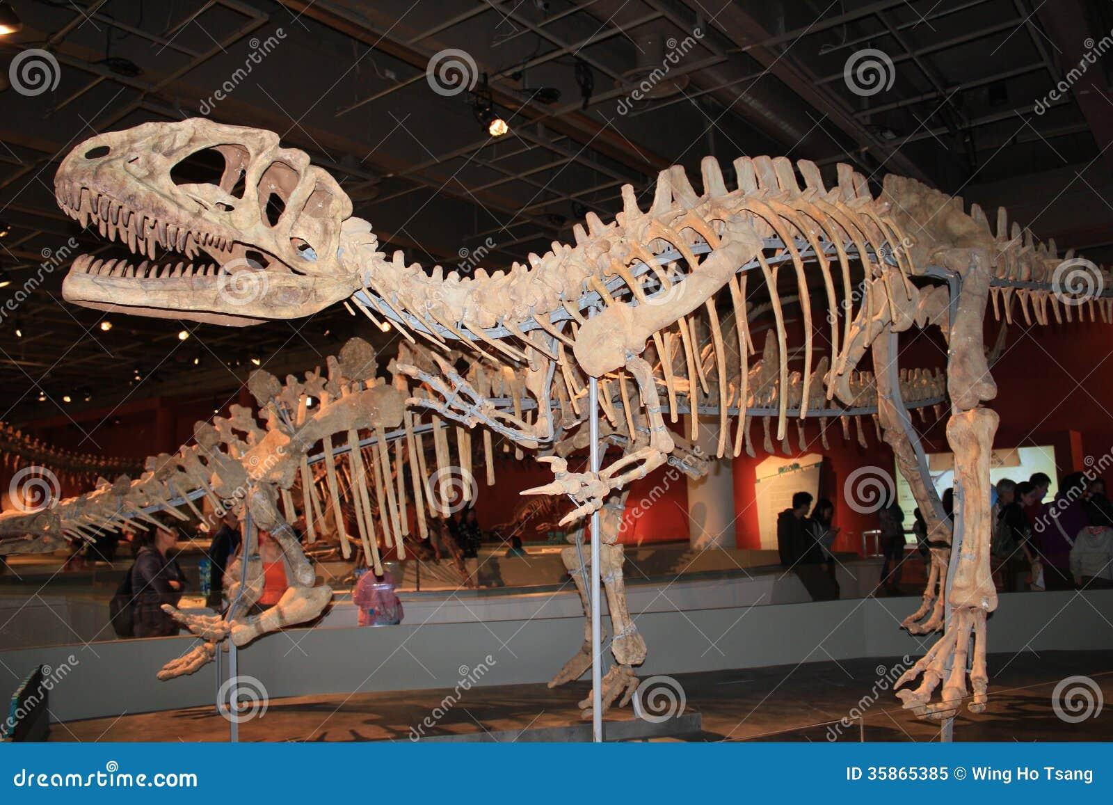 Legenden van de Reuzedinosaurussententoonstelling in Hong Kong