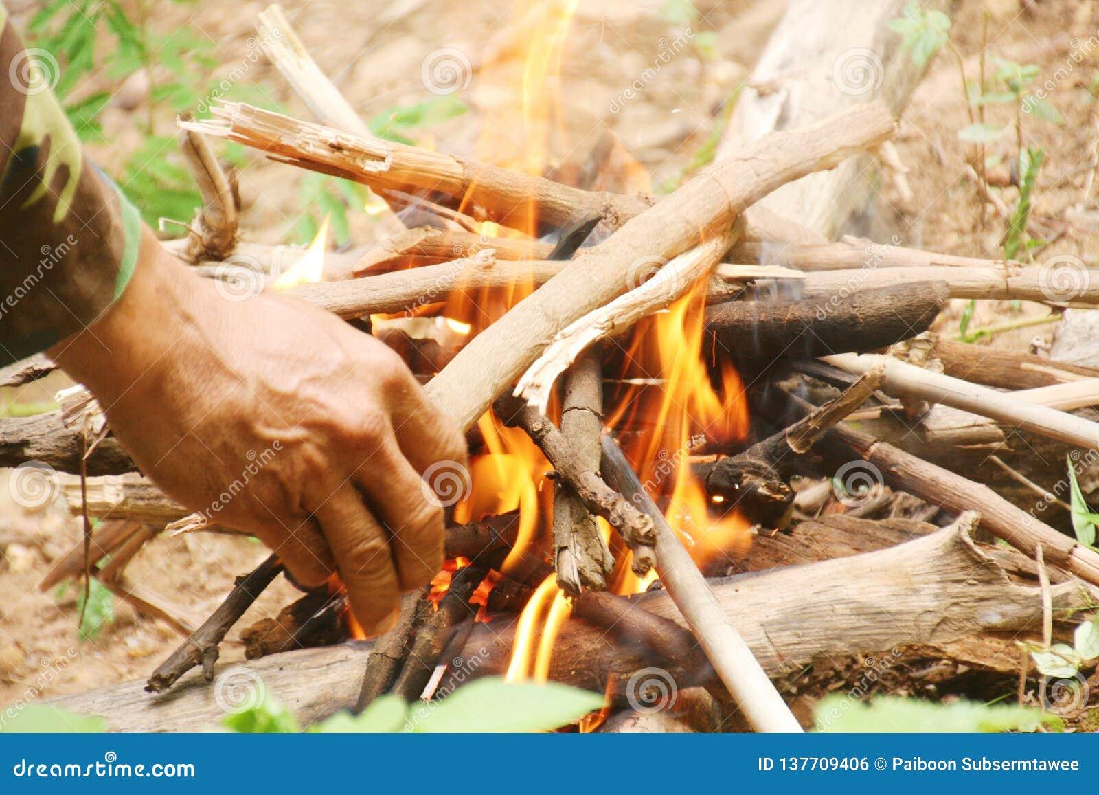 Legna da ardere messa nel fuoco