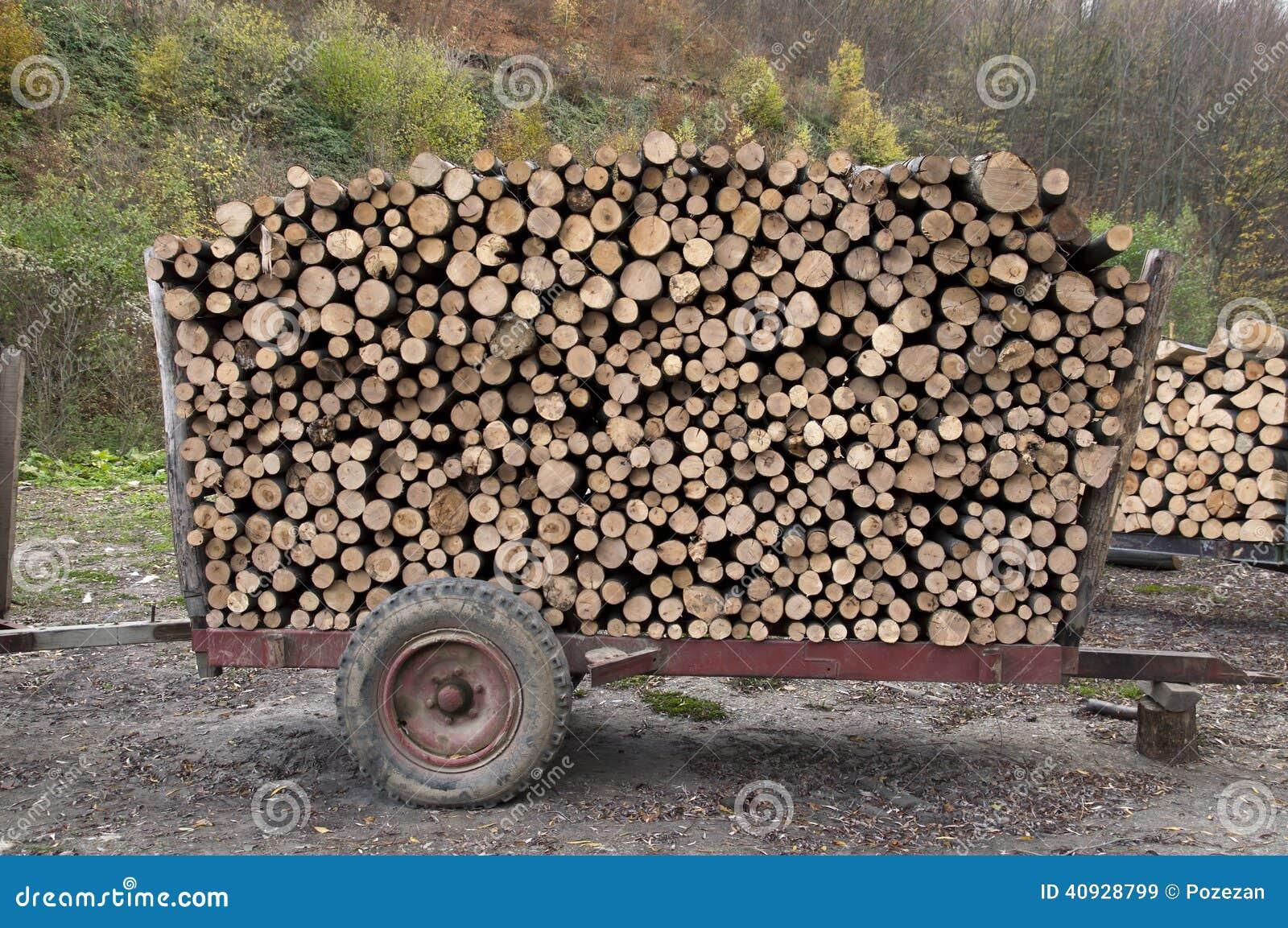 Legna Da Ardere Su Un Rimorchio Immagine Stock Immagine di alberi, esterno 40928799 # Magnani Bois De Chauffage