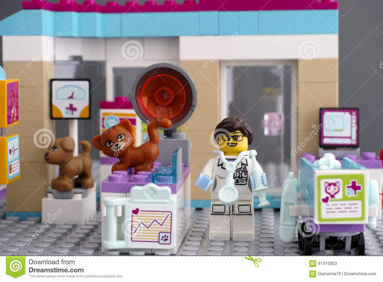 Lego Friends Vet Clinic With Pets And Doctor Stock Photo 61310953
