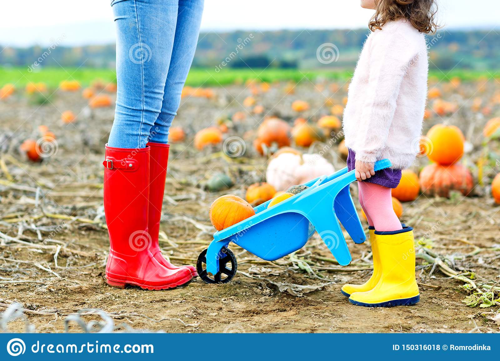 Legs of young woman and her little kid girl daugher in rainboots. Woman in red gum boots, child in yellow shoes. On