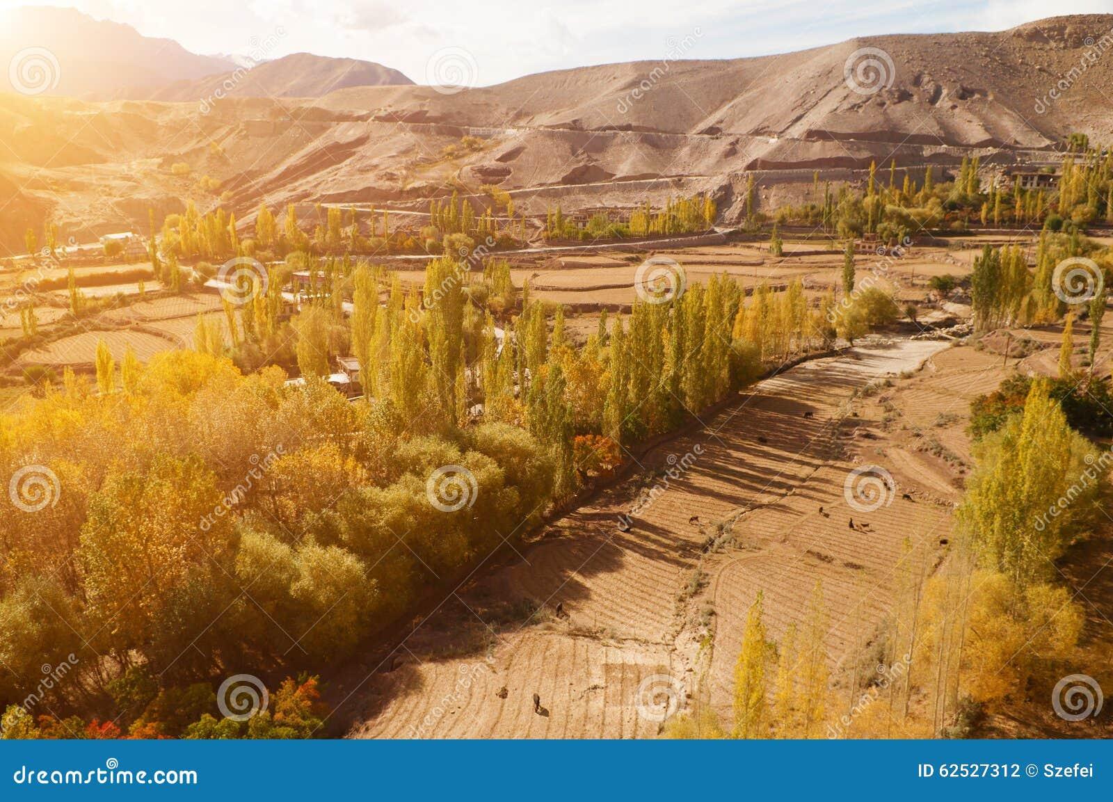 Leh村庄风景在北印度