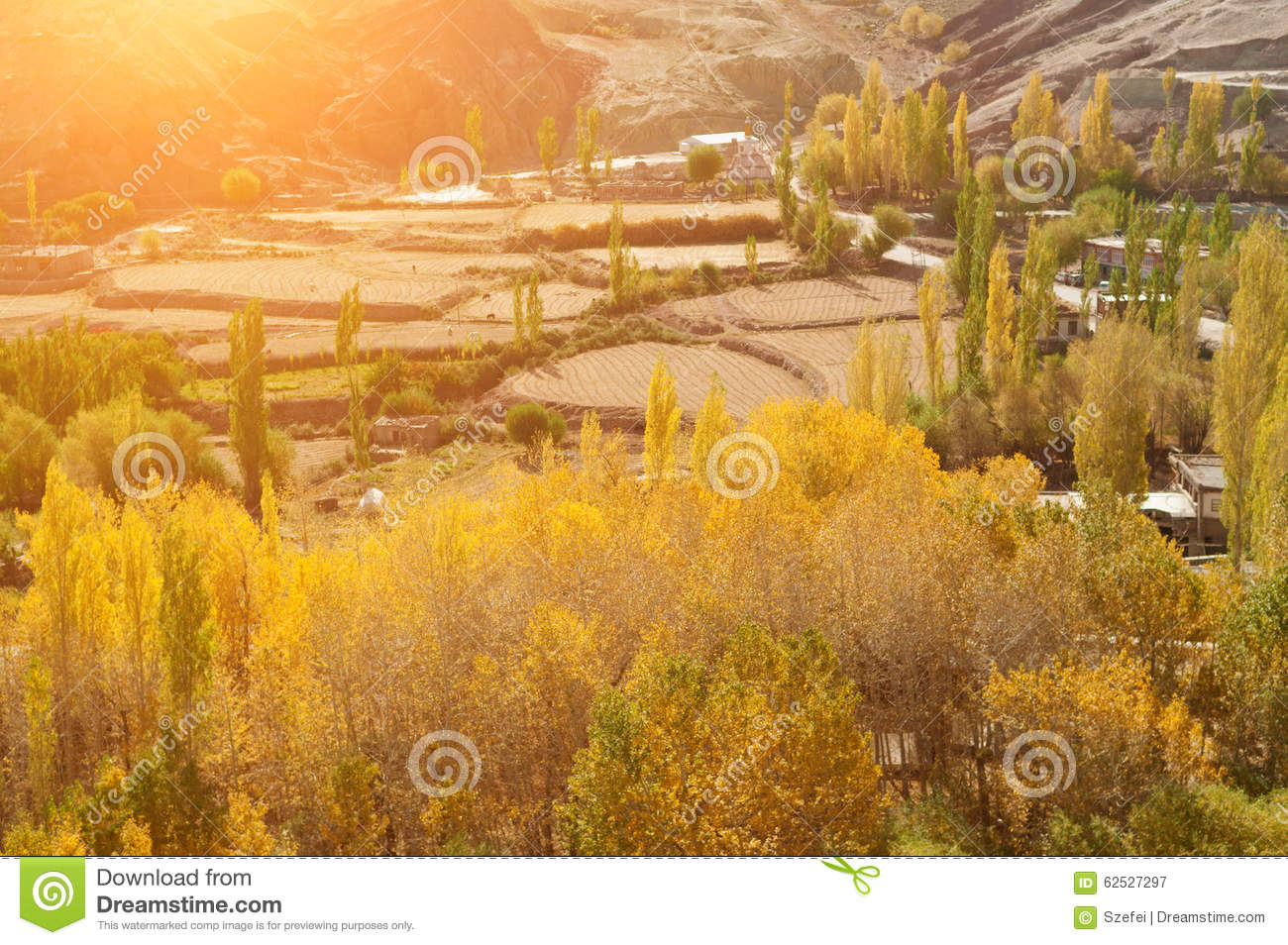 Leh Village View In Northen India Stock Photo Image